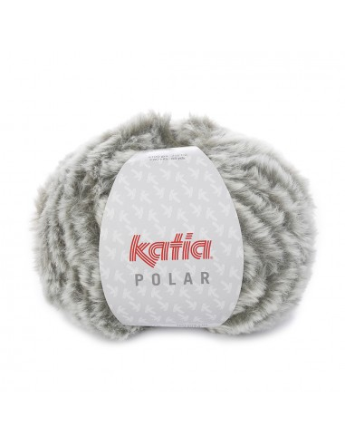 Polar de Katia