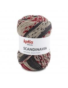 Scandinavia de Katia