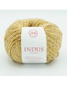Indus de AdR